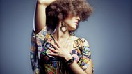 Black Women's 70s Hairstyles