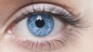 A close-up of a blue female human eye