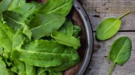 How to Freeze Sorrel Leaves