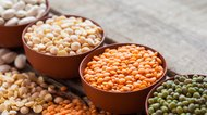 Examples of Legumes