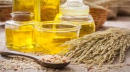 Adverse Effects of Rice Bran Oil