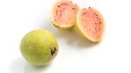 Wet Fresh Guava