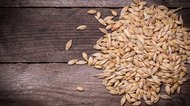 How to Malt Barley
