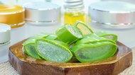 Essential set of aloe vera for skincare
