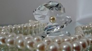 Open Crystal Clamshell surrounded by Pearls