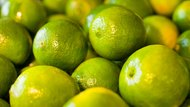 Different Type of Limes