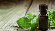 Essential Oil Recipes for Stuffy Noses