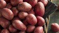 Raw Organic Red Potatoes