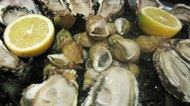 How to Boil Frozen Oysters