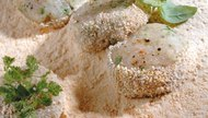 How to Use Saltines to Make Italian Bread Crumbs