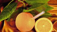 Substitutes for Orange Juice Concentrate