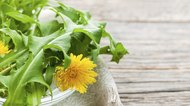Ways to Prepare Dandelion Greens