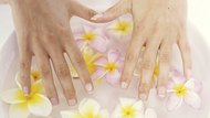 Woman's hands on flowers floating in water, close up, elevated view