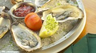 Oysters entree
