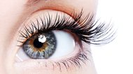 Can You Trim Eyelashes?