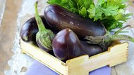 List of Various Types of Eggplant