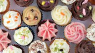Cup Cake Series