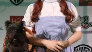 "How to Do a ""Wizard of Oz"" Dorothy Hairstyle"