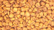 How to Make Corn Nuts