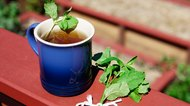 How to Dry Mint Leaves for Tea