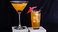 How to Mix an Amaretto Stone Sour Cocktail