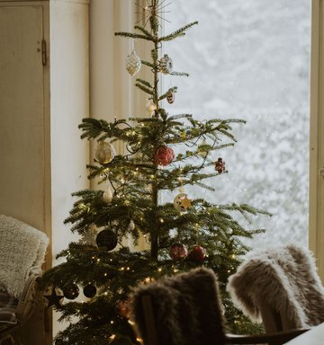 Healthy Holiday Traditions You Should Be Starting Now