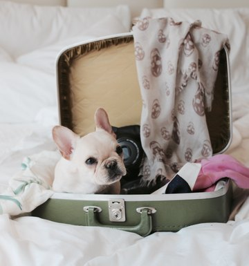 Important Tips To Travel Easier & Lighter This Holiday Season