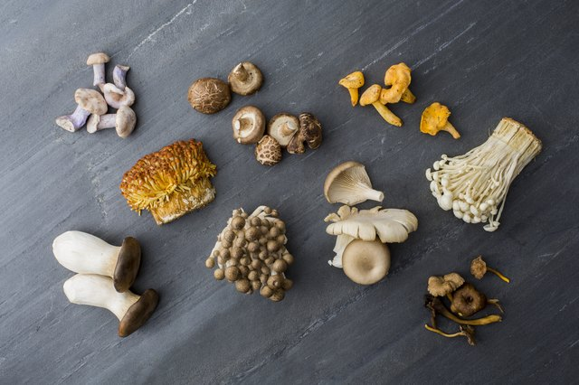 Various fungi