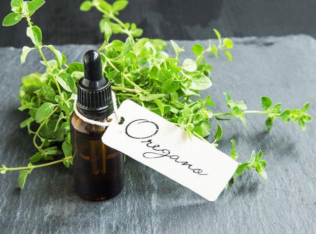 Oregano oil bottle with label
