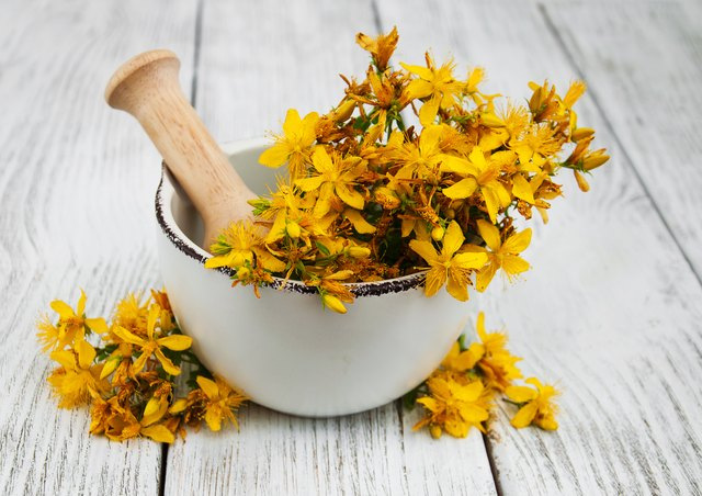 Saint-John's-wort in a mortar with pestle