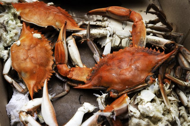 Boiled Blue Crabs in Cardboard Box