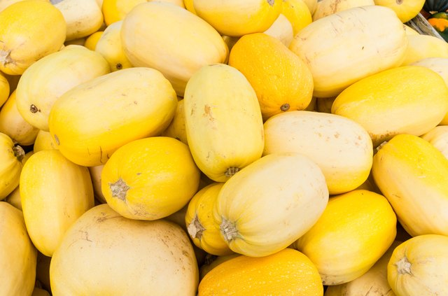 Spaghetti squash at the farmers market