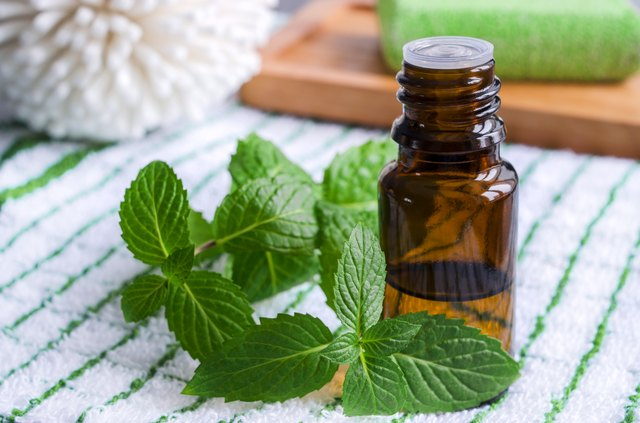 Small bottle of essential mint oil