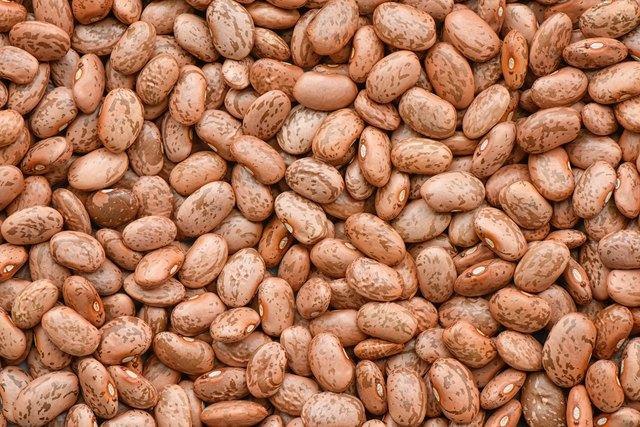 Pinto bean background