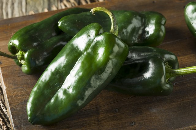 Raw Green Organic Poblano Peppers