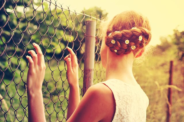 Braided hair with daisies in the sunset.