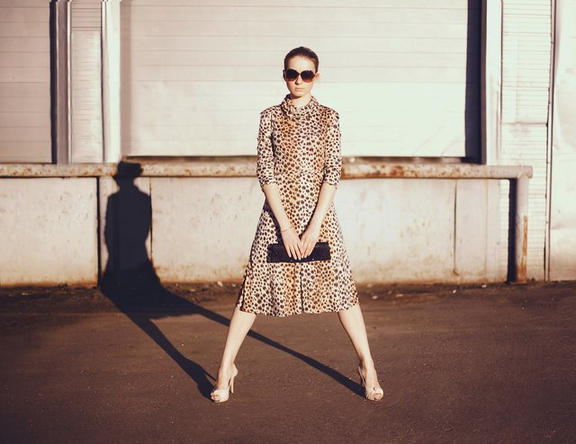 Stylish woman in a leopard dress, glasses and bag