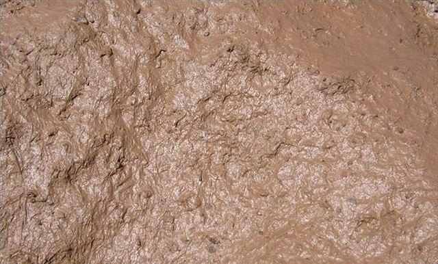 How to make a face mask with ground dirt leaftv for What is dirt made up of