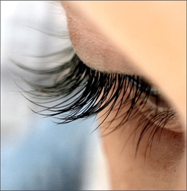 How To Make Eyelashes Grow Back Quickly Leaftv