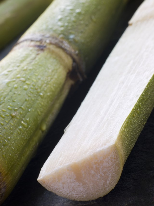 Fresh Sugar Cane Split in Half