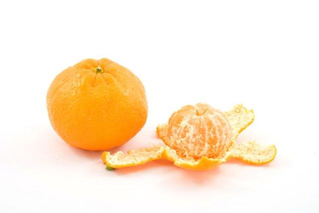 The Tangerine Is A Member Of Mandarin Orange Family