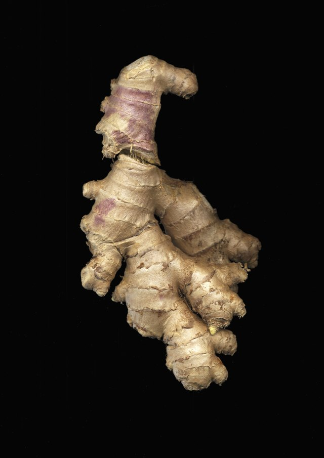 Ginger root (Zingiber officinale) on black background