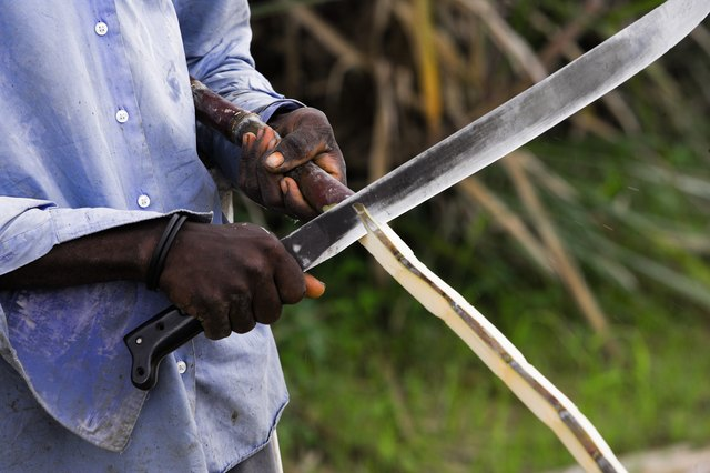 Man peeling sugar cane with machete