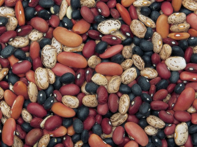 Assorted dry beans