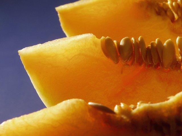Close-up of cantaloupes