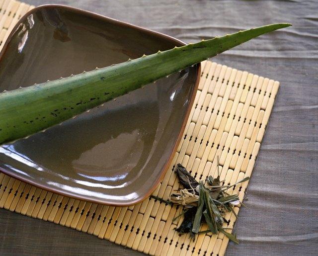 Aloe vera leaf and dried herbs