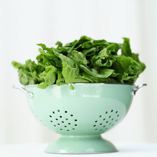 a metal colander with green leaves