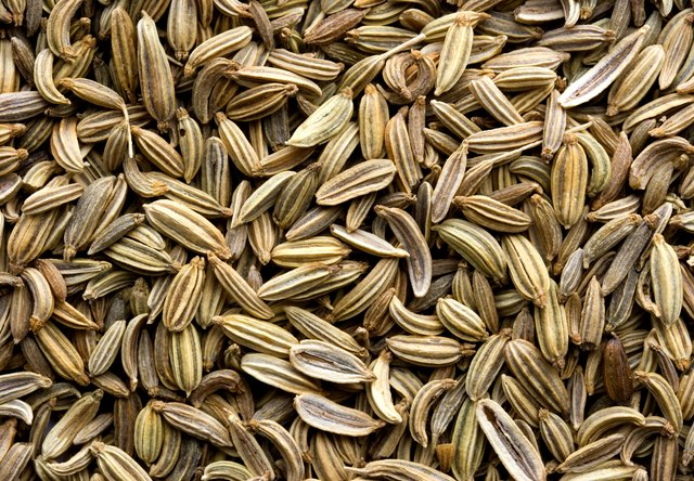 Fennel Seed Background