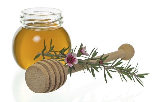 Honey with dipper and manuka flower (Leptospermum)